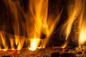 Fire burning fire — Stock Photo