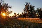 Sunrises sunsets — Stock Photo