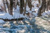 River ice. river in winter — 图库照片