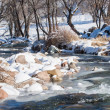 Stock Photo: River ice. river in winter