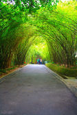 Landscapes of chinese park. — Stock Photo