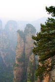 Monts brumeux zhangjiajie — Photo