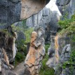 Stock Photo: Shi Lin Stone forest national park. Yunnan. China.