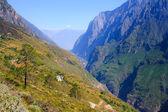 Tijger steigerende kloof. tibet. china. — Stockfoto