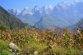 タイガー跳躍渓谷。チベット。中国. — ストック写真