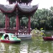 Stock Video: In Chinese park. Chengdu. Sichuan. China.