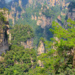 Zhangjiajie National Park, China. Avatar mountains — Stock Photo