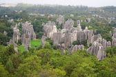 Shi lin taş orman milli parkta yunnan eyaleti, çin — Stok fotoğraf
