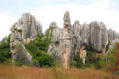 Shi Lin stone forest national park. Kunming. China. — Stock Photo