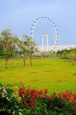 Landscape of Singapore. — Stock Photo