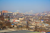 Landscape of Vladivostok — Stock Photo