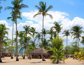 On a tropical island  Philippines — Stock Photo