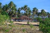 Sur un tropical île des philippines — Photo