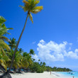 Caribbean beach ( Saona Island, Dominican Republic) — Stock Photo