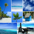 Dominican republic,picture collection,beach and sea collection,high quality collage,beach collage,summer collage,travel collage — Stock Photo