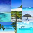 Dominican republic,picture collection,beach and sea collection,high quality collage,beach collage,summer collage,travel collage — Stock Photo #24876977