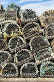 Hummer och krabba krukor fällor — Stockfoto