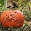 Happy Halloween pumpkin — Foto de Stock