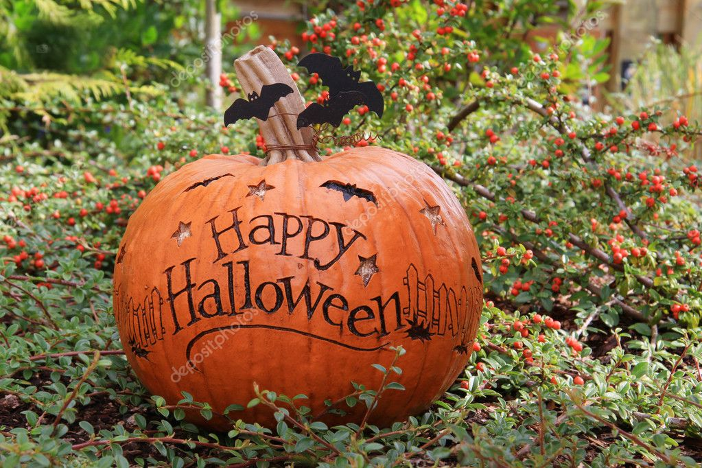 Happy Halloween pumpkin outside.  — Stockfoto #13516312