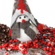 Christmas bird — Stock Photo