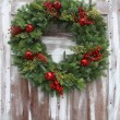 Christmas wreath — Stock fotografie #15656839
