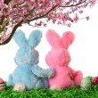 Stock Photo: Easter bunny