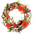 Stock Photo: Easter egg wreath