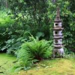 ogrod japoński — Zdjęcie stockowe #21387599