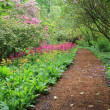 Garden path — Stock Photo #21387663