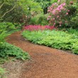 Garden path — Stock Photo #21387771