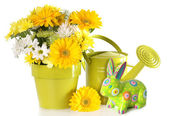 Easter Spring floral — Stock Photo