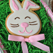 Easter bunny cookie - Stock Photo