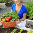 Lady vegetable gardener — Stock Photo
