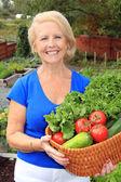 Lady vegetable gardener — Stock Photo