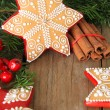 Christmas gingerbread cookie — Stockfoto