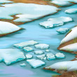 River in the spring. Melting Ice is going down the river — Stock Photo