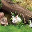Rabbit family eating grass under fallen tree — Stock Photo #22137553
