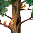 Squirrels on the tree - Stock Photo