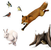 Fox is hunting a rabbit, little mouse in the stump hole, bullfinch and tit — Stock Photo
