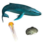 Blue whale. Orange medusa and flounder fish — 图库照片