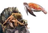 Turtle and Octopus in the rocks — Stock Photo