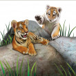 Two baby tigers playing on the rocks. — Stock Photo