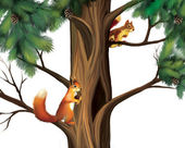 Squirrels on the tree. Two Cute Squirrels. — Stock Photo