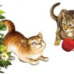Plaing Kittens — Stock Photo