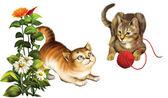 Plaing Kittens — Стоковое фото