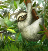 Sloth, three toe male juvenile hanging in tree in tropical rainforest jungle, Illustration — Stock Photo