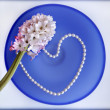 Hyacinth flower with a heart from pearl beads on blue glass plate — Stock Photo