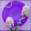Two hyacinth flower with a pearl beads on blue glass plate — Stockfoto