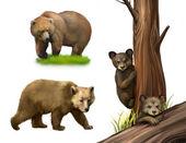 Osito ositos jugando. árbol caído, caminando oso adulto — Foto de Stock