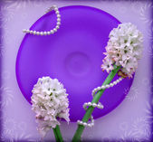 Two hyacinth flower with a pearl beads on blue glass plate — Stock Photo